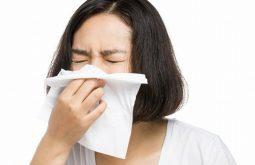 Chảy dịch mũi là dấu hiệu đặc trưng của bệnh
